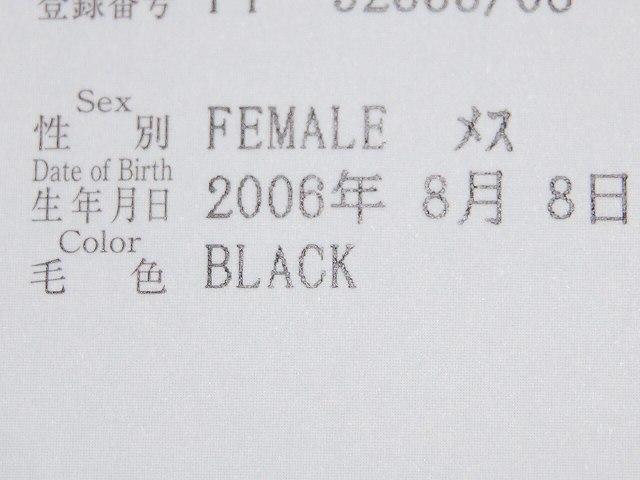 Csc_0178