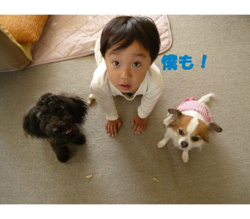 Photo_92